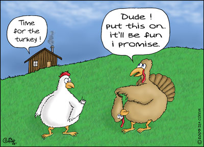 Thanksgiving Thoughts | Spurling Training Systems